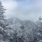 Snowshoeing Our Way to Saddleback